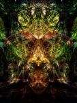Forest Sprite