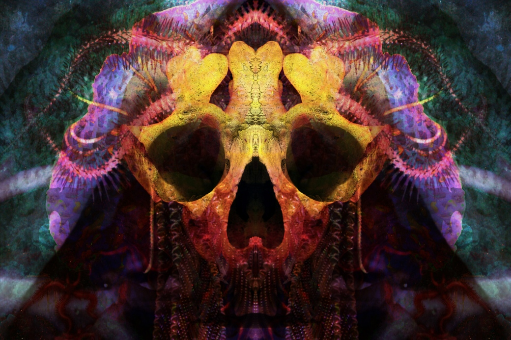 yellow-skull